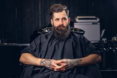 Handsome bearded man in the barbershop. Handsome bearded male with a tattoo on his arms before hair wash in a hairdressers salon royalty free stock photos