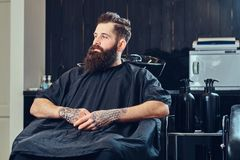 Handsome bearded man in the barbershop. Handsome bearded male with a tattoo on his arms before hair wash in a hairdressers salon stock image