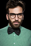 Handsome bearded man in glasses and bow tie.  Stock Photos