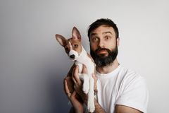 Handsome bearded man holding his basenji puppy dog in arms with love and playing with him, against a white background.  royalty free stock images