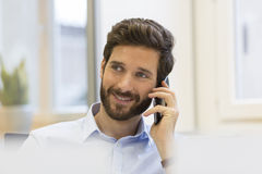 Handsome bearded man on the mobile phone in office Royalty Free Stock Images