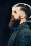 Handsome bearded man Royalty Free Stock Image