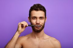 Handsome bearded man with toothbrush in his mouth looking at the camera stock photo
