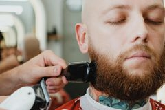 Bearded skinhead man in barbershop. Barber swipes off cut hair w royalty free stock photo