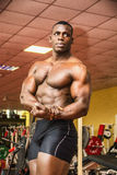 Handsome black male bodybuilder posing in gym Royalty Free Stock Images