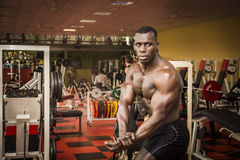 Handsome black male bodybuilder posing in gym Royalty Free Stock Image