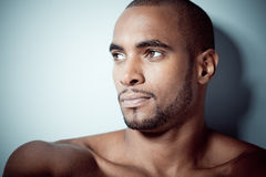 Handsome black man Stock Photography