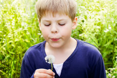 Handsome blond boy blow dandelion. Outdoor Royalty Free Stock Photo