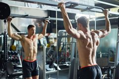 Handsome Bodybuilder Concentrated on Training stock photography