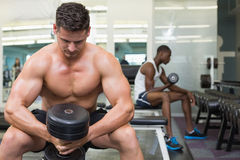 Handsome bodybuilder holding heavy black dumbbell Royalty Free Stock Photos