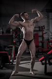 Handsome bodybuilder posing in gym. Perfect muscular male body Royalty Free Stock Image