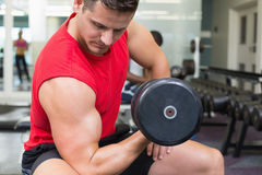 Handsome bodybuilder sitting on bench lifting dumbbell Stock Photos