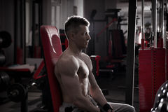 Handsome bodybuilder works out on athletic bench in gym. Perfect muscular male body Stock Image