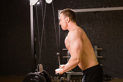 Handsome bodybuilder works out excercise in gym Royalty Free Stock Images