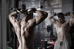 Handsome bodybuilder works out pushing up excercise in gym. Perfect muscular male body Stock Image