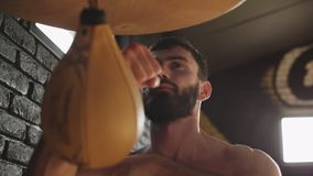 Handsome boxer with black beard exercising with speed bag at gym. Working hard stock footage