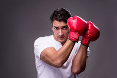 The handsome boxer in boxing concept Royalty Free Stock Photos