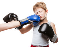 Handsome boxer child boy training boxing sport got punched Stock Images