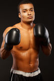 Handsome boxer posing in boxing gloves Stock Image