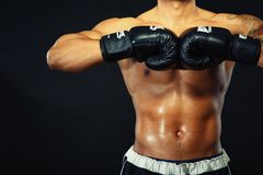Handsome boxer posing in boxing gloves Stock Photos