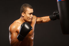 Handsome boxer on the workout Royalty Free Stock Photos