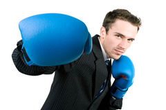 Handsome boxing man in suit isolated. Handsome young stressed man in suit and gloves boxing in office, made in studio isolated on white background Royalty Free Stock Photos