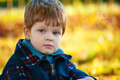 Handsome boy, autumn portrait Royalty Free Stock Image