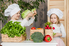 Handsome boy and beautiful young girl playing in the kitchen chefs. Healthy food. Vegetables. Handsome boy and beautiful young girl playing in the kitchen chefs Stock Images