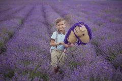 Handsome boy with blond hairs wearing blue tshirt and stylish shorts with pulleys gallows posing on summer field full of lavender. Flowers with hand made horse Royalty Free Stock Image