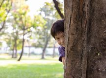 Handsome boy hiding behind tree for playing hide and seek with friend at park or son hiding mother behind tree because little kid stock photo