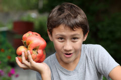 Handsome boy holding tomatoes Stock Photography