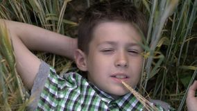 Handsome boy lying on the field and dreaming. Young boy enjoying nature outdoors stock photos