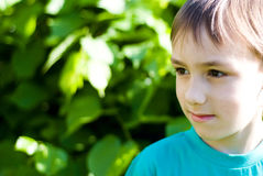 Handsome boy of nature Royalty Free Stock Photos