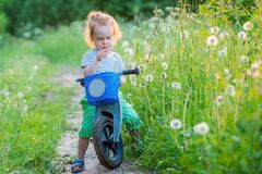 Handsome boy toddler in countryside a meadow full of dandelions