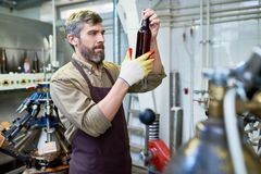 Handsome Brewer Carrying out Inspection stock photography