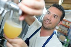 Handsome brewer in uniform tasting beer at brewery. Handsome brewer in uniform tasting beer at the brewery Royalty Free Stock Photos