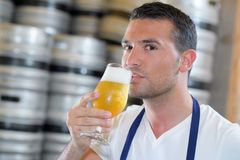 Handsome brewer in uniform tasting beer at brewery Royalty Free Stock Photography