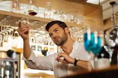 Handsome brunette man standing at the bar counter. Professional barman. Handsome brunette man standing at the bar counter while holding a glass with wine Royalty Free Stock Photo