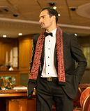 Handsome brunette wearing suit and scarf Royalty Free Stock Image