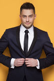 Handsome business man in a business suit Royalty Free Stock Image