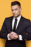 Handsome business man in a business suit Royalty Free Stock Photography