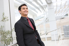 Handsome Business Man at Office Royalty Free Stock Photo