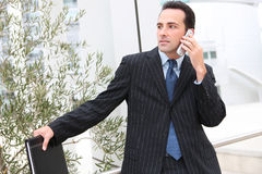 Handsome Business Man at Office on Phone Royalty Free Stock Photos
