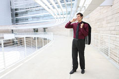 Handsome Business Man on Phone Royalty Free Stock Images