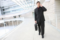 Handsome Business Man on Phone Royalty Free Stock Photo