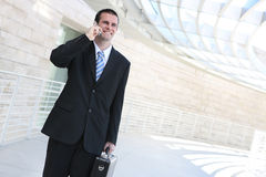 Handsome Business Man on Phone Stock Photo