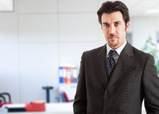 Handsome business man portrait in the office Royalty Free Stock Photography