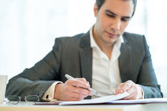 Handsome businessman analysing a report Royalty Free Stock Image