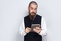 Handsome businessman with beard and handlebar mustache holding and using digital tablet. Studio shot, on gray background royalty free stock photos