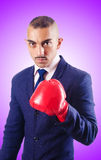Handsome businessman with boxing gloves Royalty Free Stock Image